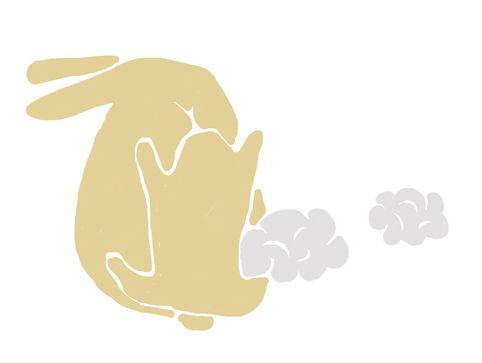 bourrage lapin.jpg
