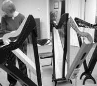 As Seen on Groupon - Harp Lessons