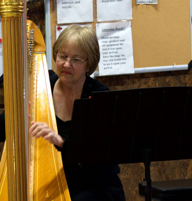 Adult Harp Lessons