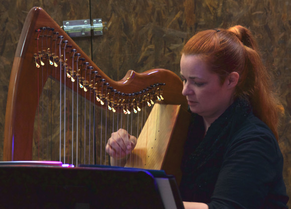 Harp Lessons for Adults
