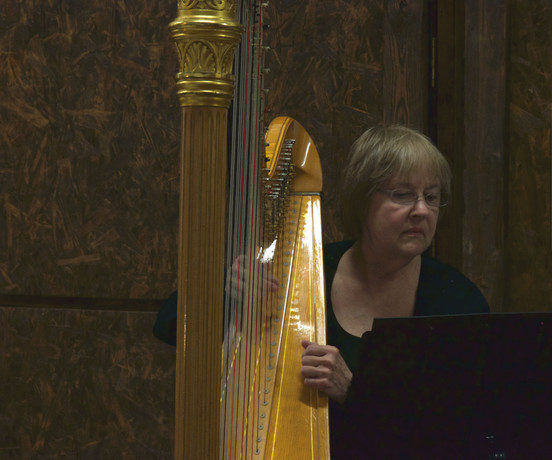 Harp Lessons All Skill Levels