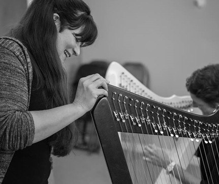 Harp Lessons - Groupon - All Ages