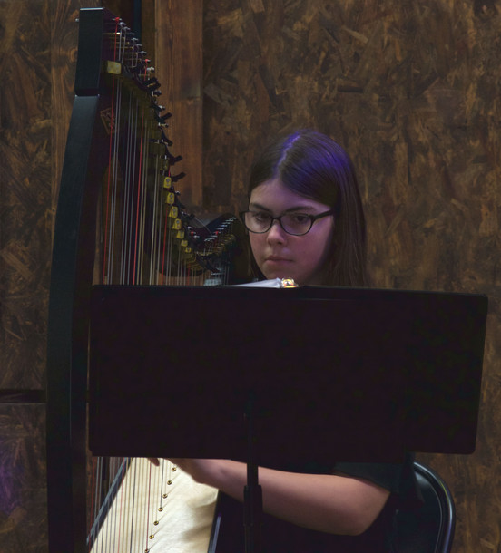 Beginner Harp Lessons