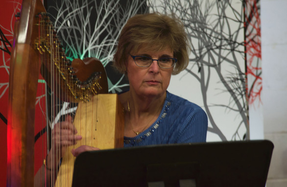 Adult Beginning Harp Lessons