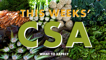 Wednesday, March 15th CSA supplies