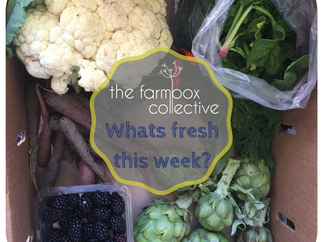 Your CSA contents for March 29th