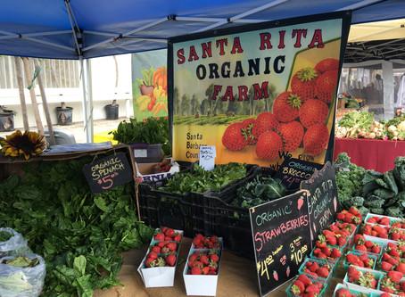 Santa Rita Organic Farm