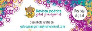 Gatos y Mangurrias