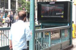New York Digital Urban Panel