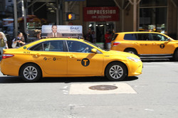 Daily Show Taxi Top