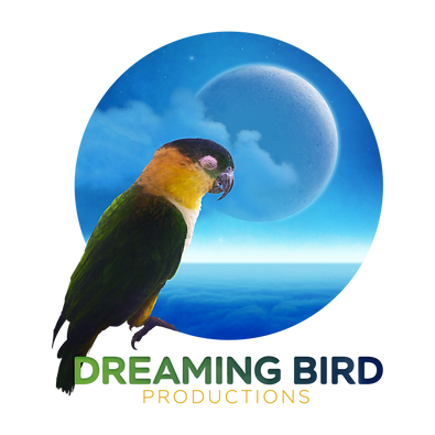 Dreaming Bird Productions egg donation