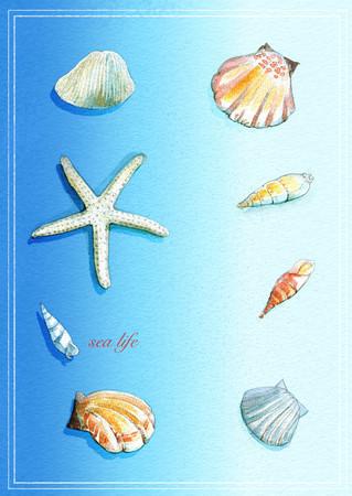 海生物_01