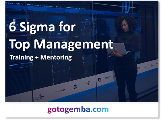 6 Sigma for Executives Online Training & Mentoring