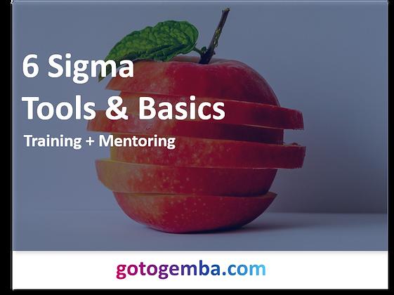 6 Sigma  Tools & Basics Online Training & Mentoring