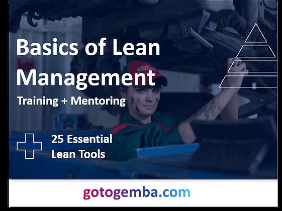 Basics of Lean Management Online Training & Mentoring
