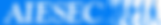 AIESEC logo.png