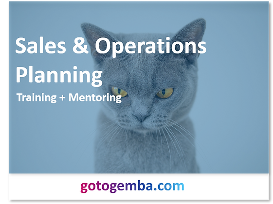 Sales & Operations Planning Online Training & Mentoring