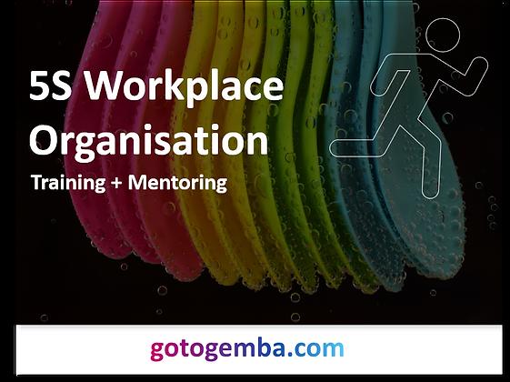 5S Workplace Organisation Online Training & Mentoring