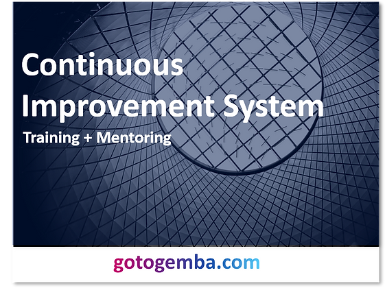 Continuous Improvement System Online Training & Mentoring