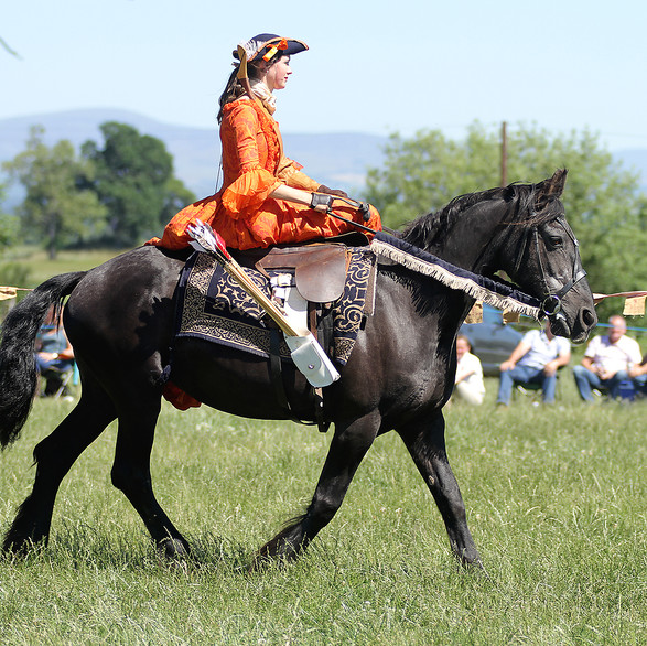 Side saddle mounted archery performed in style!