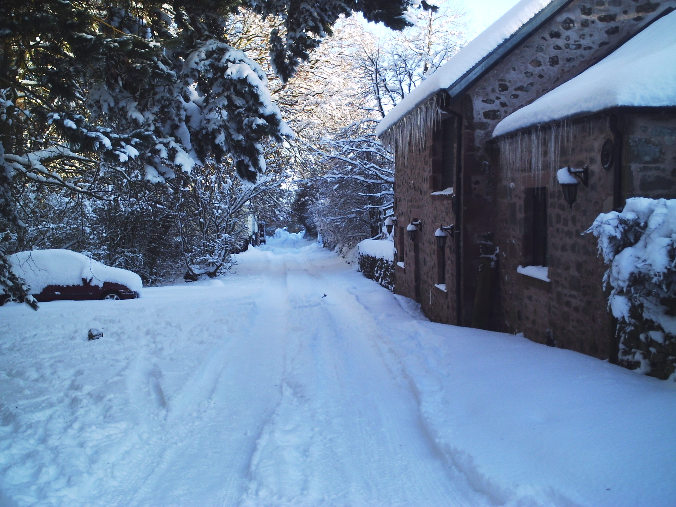 snow 2010 020