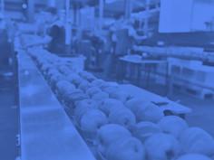 Booster les performances des distributeurs dans l'industrie alimentaire