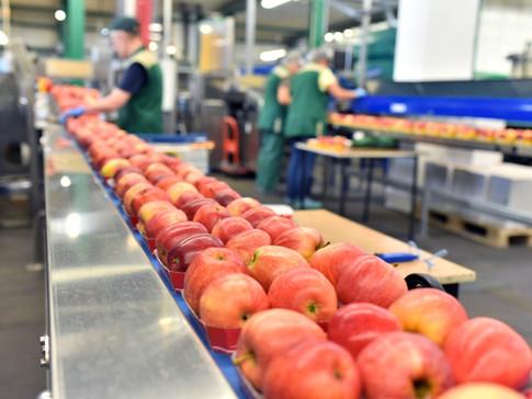 Aumentar el rendimiento de los distribuidores en la industria alimentaria