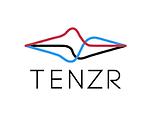 Tenzr logo.png