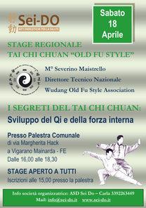 Stage Tai Chi 18042015.jpg