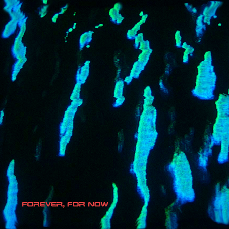 SINGLE REVIEW: Forever, For Now (LOCAL AUTHORITY)