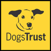 DOGS TRUST.jpg