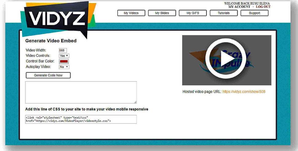 Vidyz review integrate area1.jpg