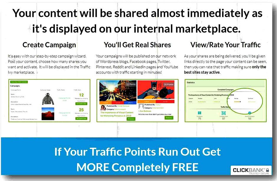 Traffic Ivy review system.jpg