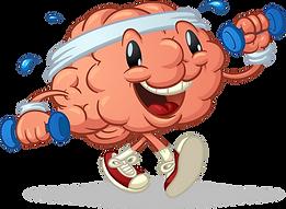 sport brain.png