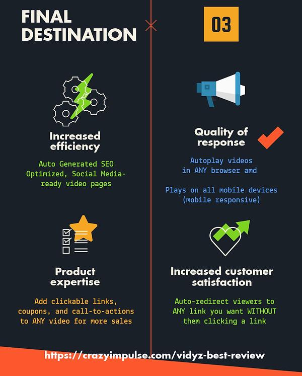 vidyz review infographics 3.png