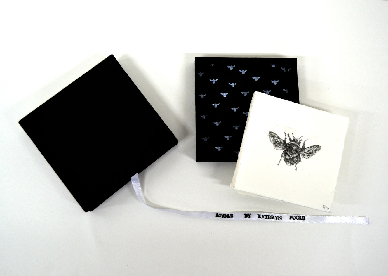 Apidae box, photolithograph prints in a handmade box, edition of 10, 2013