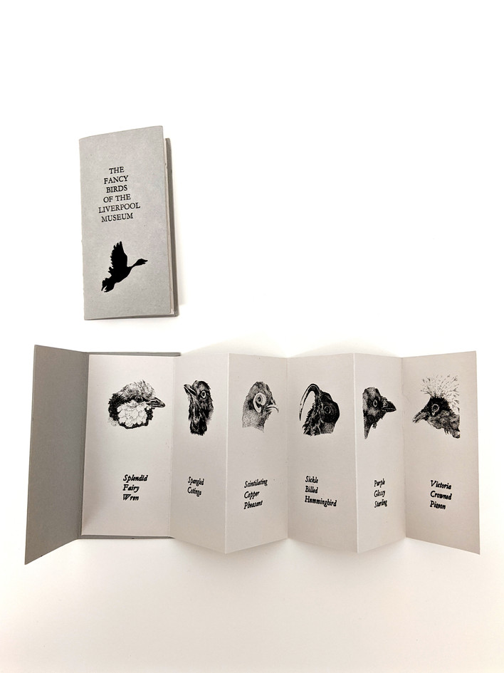 Fancy Birds, Letterpress and risograph book, edition of 60, 2016