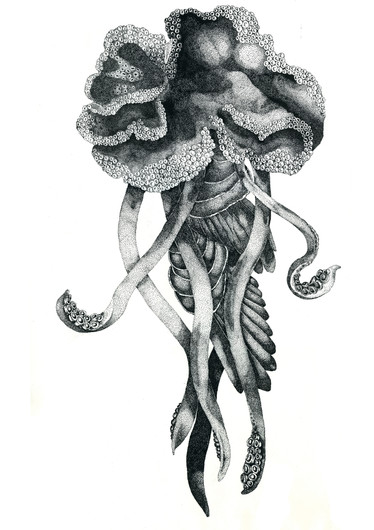 Tracyphyllia macrosoma