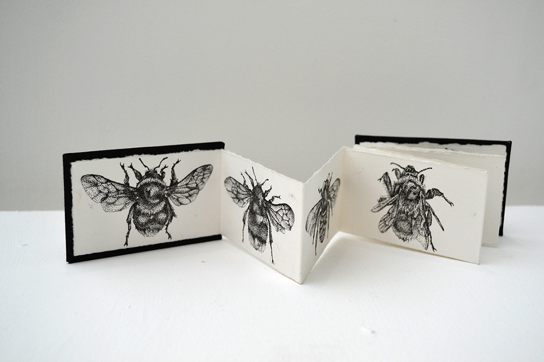 Apidae book, pen and ink, 2013