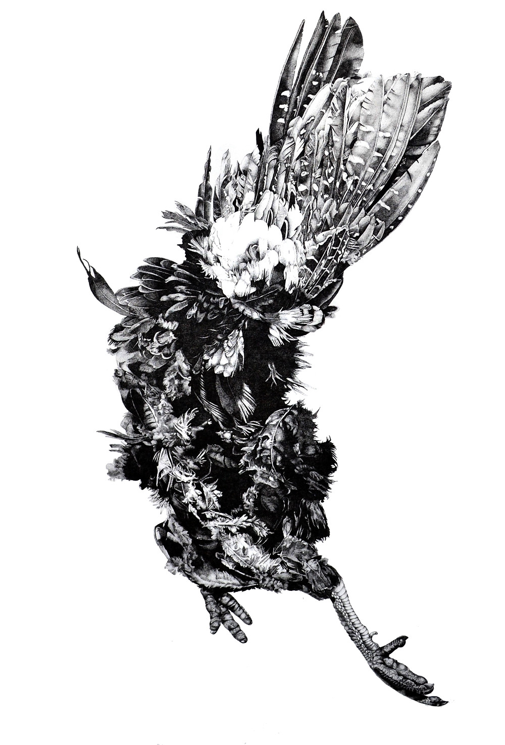 Pointillist Bird, Pheasant Roadkill, Memorial Art