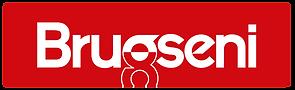 Brugseni_logo_2017.png