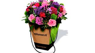 topbloemen2-800x445.png