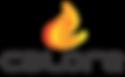 CALORE FIREPLACES LOGO_2017_BLACK PNG.pn