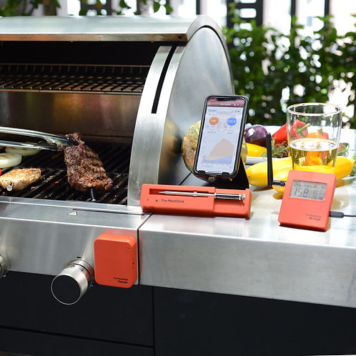 The MeatStick - Dual Digital Thermometer