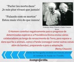 Remy Chauvin