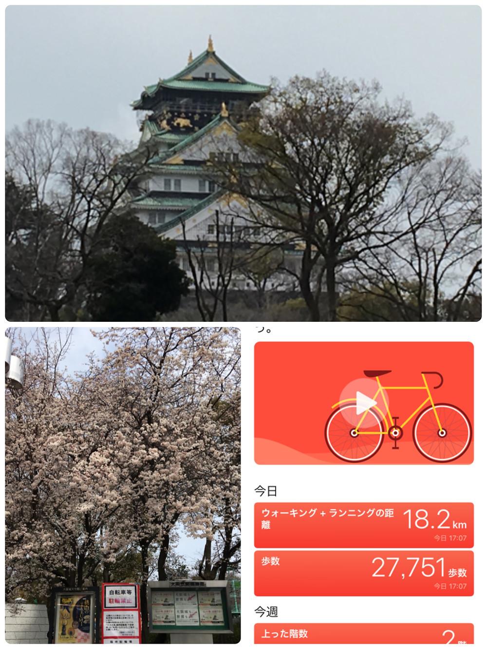 大阪城公園へウォーキング