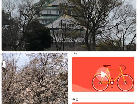 いざ、大阪城公園へ~