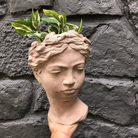 """Mueller Pick Up: N'Joy Pothos in handmade 9"""" goddess in vintage pink cement"""