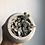 """Thumbnail: Variegated string of hearts in 3"""" concrete planter"""