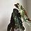 "Thumbnail: Begonia maculata in 6"" concrete pot"